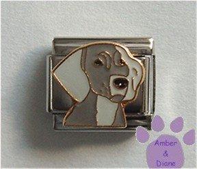Weimeraner Dog Italian Charm Weimaraner Pup