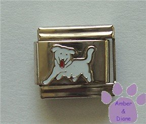 White Dog Italian Charm Puppy Running
