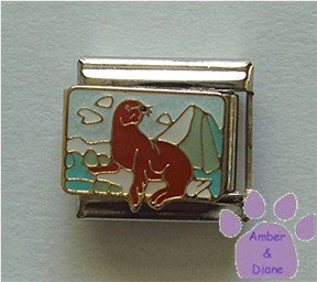 Seal on an Ice Flow Italian Charm with a Scenic background