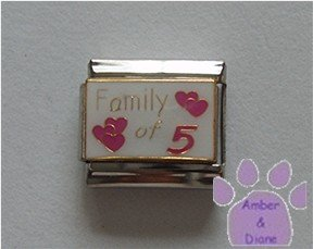 Family of 5 Italian Charm on white with 5 pink hearts