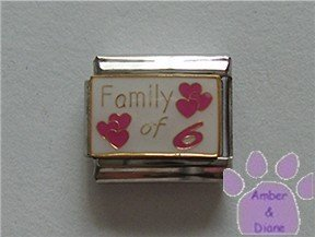 Family of 6 Italian Charm on white with 6 pink hearts
