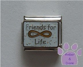 Friends for Life Italian Charm with the Eternity symbol