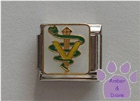 Veterinary Symbol Italian Charm on white