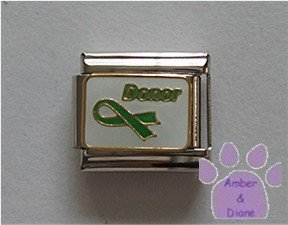Donor Awareness Green Ribbon Italian Charm on white