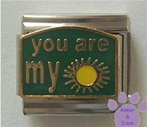 You are my Sunshine Italian Charm on Green Enamel