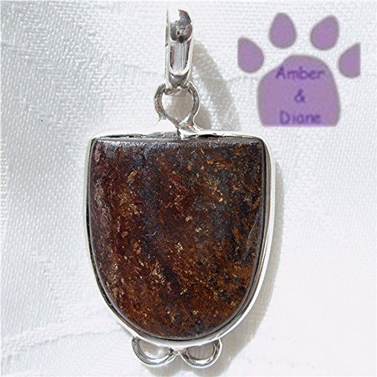 Petrified Wood Oval Sterling Silver Pendant in a simple frame
