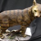 North American Bobcat (up)