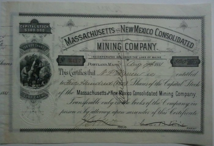 Massachusetts & New Mexico Consolidated Mining Co. 1881