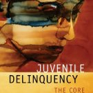 Juvenile Delinquency The Core 3rd Ed. by Larry J. Siegel 0495095427