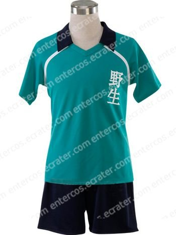 Inazuma Eleven Yasei School Soccer Uniform Cosplay Costume  any size