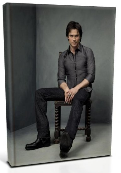 Vampire Diaries Damon Salvatore (1) Canvas Print 12 x 16 (Print Run Limited to 50)