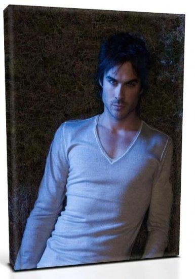 Vampire Diaries Damon Salvatore (2) Canvas Print 12 x 16 (Print Run Limited to 50)