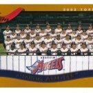 2002 Topps Anaheim Angels 19 card team SET
