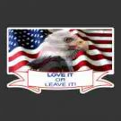"""Love It or Leave IT"" w/Eagle on Flag Decal"