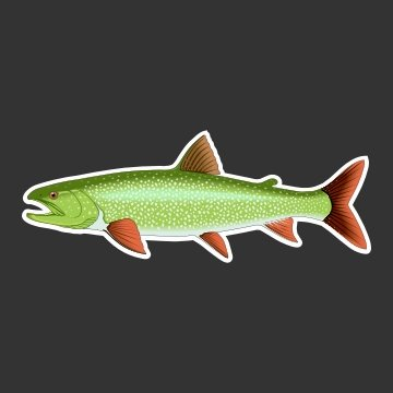 Lake Trout Fishing Decal