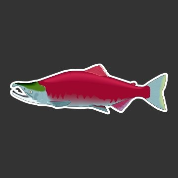 Sockeye Salmon Fishing Decal