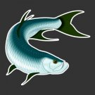 Tarpon Fishing Decal