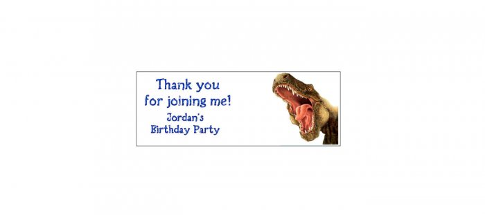 30 DINOSAUR Lollipop, Sucker Tags Labels, BIRTHDAY PARTY FAVORS