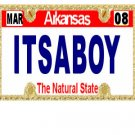 30 ARKANSAS License Plate BOY Baby Shower Candy Bar Wrappers Hershey's Nugget Labels Party Favors
