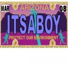 30 ARIZONA License Plate BOY Baby Shower Candy Bar Wrappers Hershey's Nugget Labels Party Favors