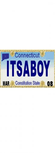 30 CONNECTICUT License Plate BOY Baby Shower Candy Bar Wrappers Hershey's Nugget Labels Party Favors