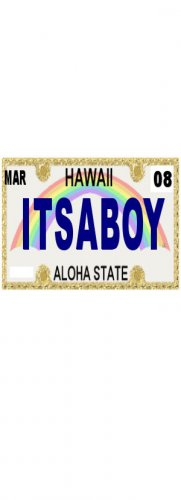 30 HAWAII License Plate BOY Baby Shower Candy Bar Wrappers Hershey's Nugget Labels Party Favors