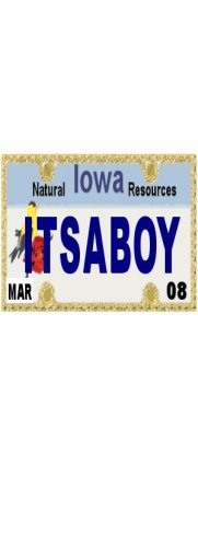 30 IOWA License Plate BOY Baby Shower Candy Bar Wrappers Hershey's Nugget Labels Party Favors