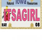 30 IOWA License Plate GIRL Baby Shower Candy Bar Wrappers Hershey's Nugget Labels Party Favors