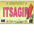 30 KENTUCKY License Plate GIRL Baby Shower Candy Bar Wrappers Hershey's Nugget Labels Party Favors