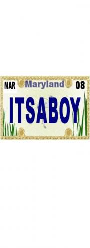 30 MARYLAND License Plate BOY Baby Shower Candy Bar Wrappers Hershey's Nugget Labels Party Favors