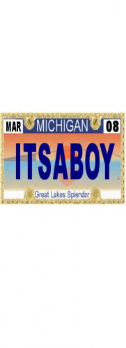 30 MICHIGAN  License Plate BOY Baby Shower Candy Bar Wrappers Hershey's Nugget Labels Party Favors