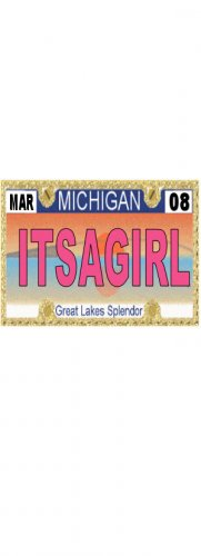 30 MICHIGAN  License Plate GIRL Baby Shower Candy Bar Wrappers Hershey's Nugget Labels Party Favors