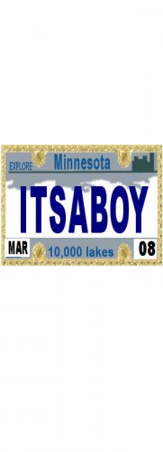 30 MINNESOTA  License Plate BOY Baby Shower Candy Bar Wrappers Hershey's Nugget Labels Party Favors