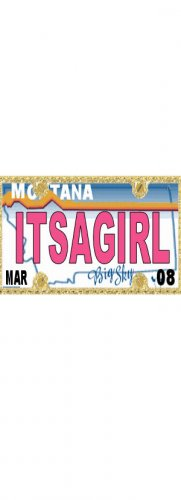 30 MONTANA License Plate GIRL Baby Shower Candy Bar Wrappers Hershey's Nugget Labels Party Favors