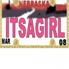 30 NEBRASKA License Plate GIRL Baby Shower Candy Bar Wrappers Hershey's Nugget Labels Party Favors