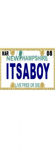 30 NEW HAMPSHIRE License Plate BOY Baby Shower Candy Bar Wrappers Hershey Nugget Labels Party Favors