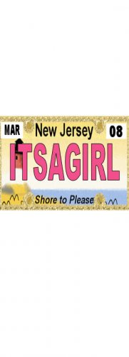 30 NEW JERSEY License Plate GIRL Baby Shower Candy Bar Wrappers Hershey's Nugget Labels Party Favors