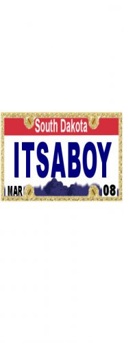 30 SOUTH DAKOTA License Plate BOY Baby Shower Candy Bar Wrappers Nugget Labels Party Favors