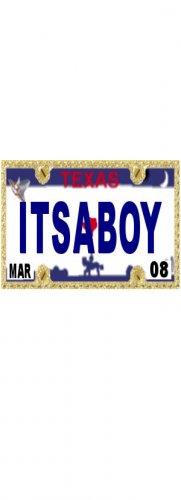30 TEXAS License Plate BOY Baby Shower Candy Bar Wrappers Hershey's Nugget Labels Party Favors