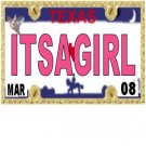 30 TEXAS License Plate GIRL Baby Shower Candy Bar Wrappers Hershey's Nugget Labels Party Favors