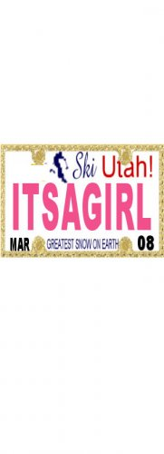 30 UTAH License Plate GIRL Baby Shower Candy Bar Wrappers Hershey's Nugget Labels Party Favors