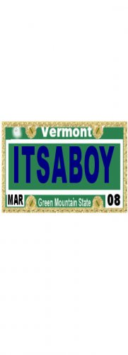 30 VERMONT License Plate BOY Baby Shower Candy Bar Wrappers Hershey's Nugget Labels Party Favors