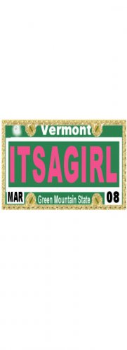 30 VERMONT License Plate GIRL Baby Shower Candy Bar Wrappers Hershey's Nugget Labels Party Favors