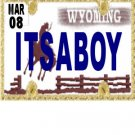 30 WYOMING License Plate BOY Baby Shower Candy Bar Wrappers Hershey's Nugget Labels Party Favors