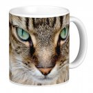 Green Eyed Cat Kitten Pet Photo Gift Coffee Mug Cup