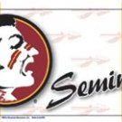 Florida State Seminoles License