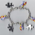 Autism Charm Bracelet