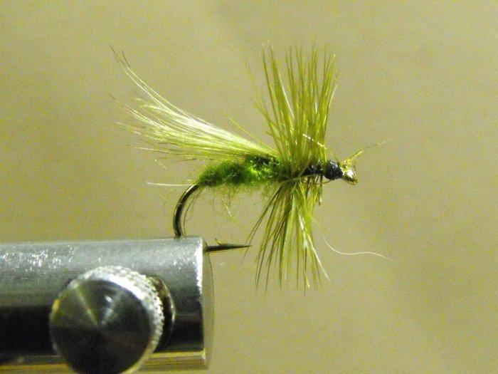 Fluttering Caddis, Olive