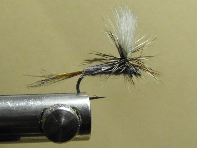 Pheasant Tail - Parachute