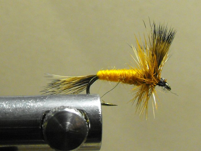 Wulff, Orange - Hair Wing
